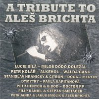 Různí interpreti – A Tribute to Aleš Brichta – CD