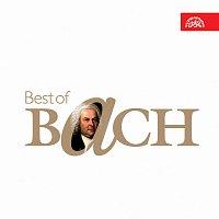 Různí interpreti – Best of Bach – CD