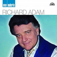 Richard Adam – Pop galerie – CD