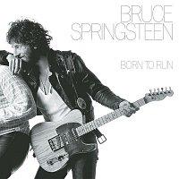 Bruce Springsteen – Born To Run - 30th Anniversary Edition – LP