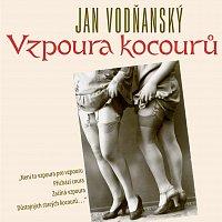 Jan Vodňanský – Vodňanský: Vzpoura kocourů – CD