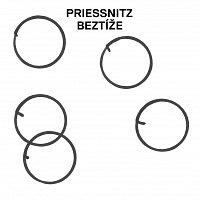 Priessnitz – Beztíže – LP