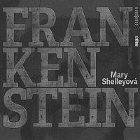 Lukáš Hlavica, Miroslav Táborský, Jiří Hromada – Shelleyová: Frankenstein (MP3-CD) – CD-MP3