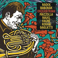 Radek Baborák, Baborák Ensemble – Orquestrina – CD