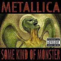 Metallica – Some Kind Of Monster – CD