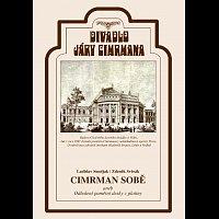 Divadlo Járy Cimrmana – Cimrman sobě aneb Odhalení pamětní desky z platiny – DVD