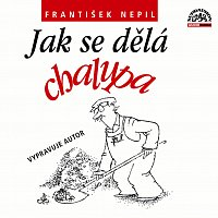 František Nepil – Nepil: Jak se dělá chalupa – CD