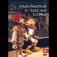 Divadlo S + H – S+H Hurvínkova kouzelná flétna – DVD