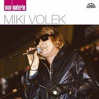 Miki Volek – Pop galerie – CD