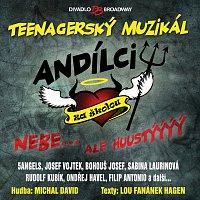 Různí interpreti – Muzikál: Andílci za školou – CD