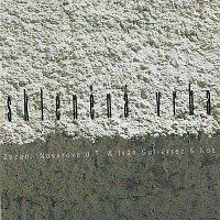 Zuzana Navarová – Skleněná vrba – CD