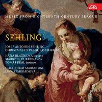 Collegium Marianum, Jana Semerádová – Sehling: Vánoce v pražské katedrále. Hudba Prahy 18. století – CD
