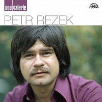 Petr Rezek – Pop galerie – CD