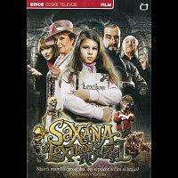 Různí interpreti – Saxana a Lexikon kouzel – DVD