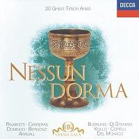 "Různí interpreti – 20 Great Tenor Arias - ""Nessun Dorma"" - Bizet / Donizetti / Puccini / Verdi etc. – CD"
